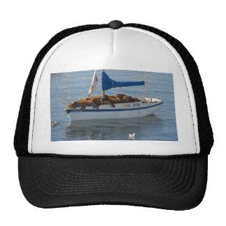 Seal Boat Hat