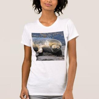 seal HA...HA...HAPPY laughing seal pup T-Shirt