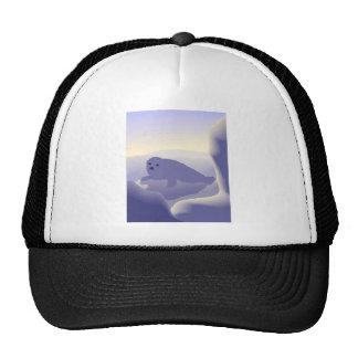 Seal Mesh Hat