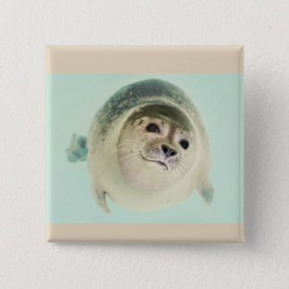 Seal of approval 15 cm square badge