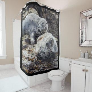 seal photograph shower curtain
