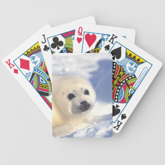 Seal Pup Face Bicycle Playing Cards
