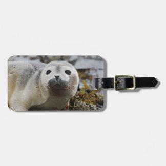 Seal Pup Luggage Tag