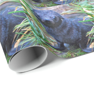 Seal Pup Wrapping Paper