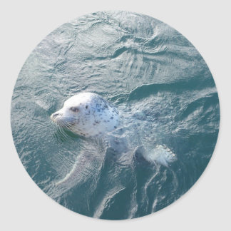 Seal Round Sticker