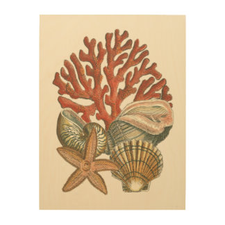 Sealife Collection Wood Wall Art