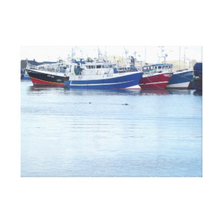 Seals at Howth Harbour in Dublin Ireland Canvas Print
