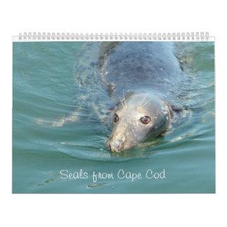 Seals of Cape Cod  Calendar