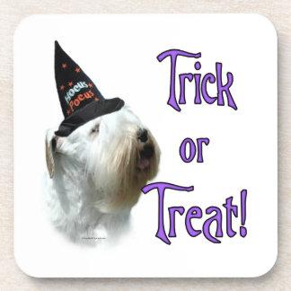 Sealyham Terrier Trick or Treat Coaster