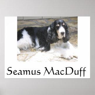 Seamus MacDuff Poster