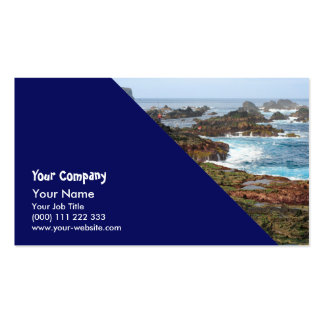 Seascape from Azores islands Pack Of Standard Business Cards