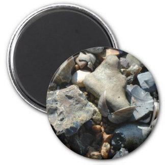 seashell 3 magnet