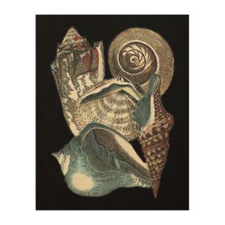 Seashell Anthology Wood Print