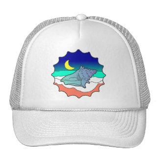 Seashell at Moonlight Cap