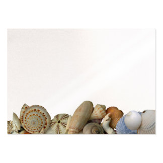 Seashell Beach Blank Place Cards Pack Of Chubby Business Cards