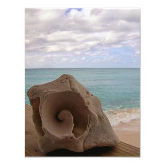 "Seashell Beach Paradise 4.25"" X 5.5"" Invitation Card"