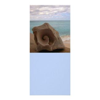 Seashell Beach Paradise Rack Card Design