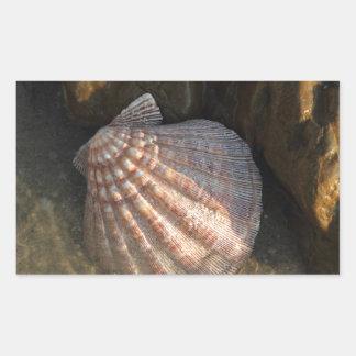 Seashell By a Rock Rectangular Sticker