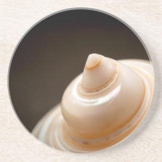 Seashell Coaster