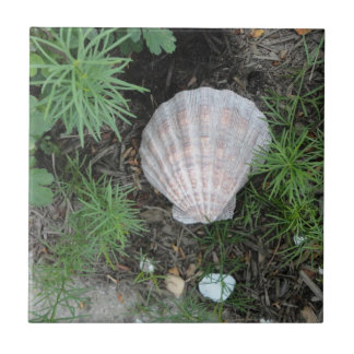 Seashell in Garden Tile