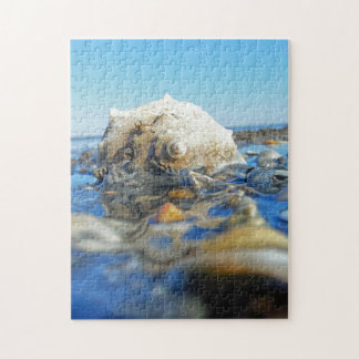 Seashell In Water Jigsaw Puzzle