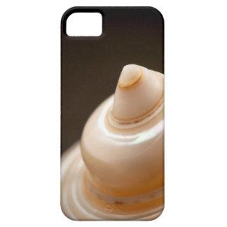 Seashell iPhone 5 Covers