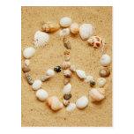 Seashell Peace Sign Postcard