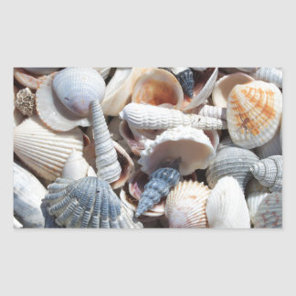 Seashell Rectangular Sticker