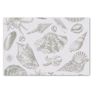 Seashell Soft Antique Art Print Beach House Tissue Paper