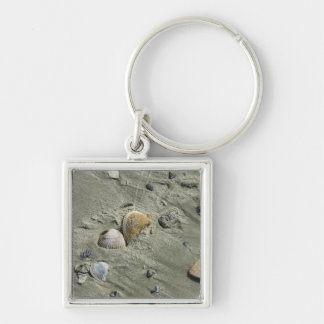 Seashells And Sand Silver-Colored Square Key Ring