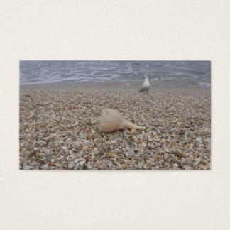 Seashells and Sea Gulls Business Card