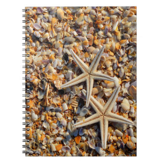 Seashells and Starfish Notebook