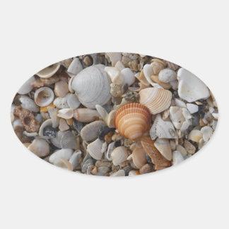 Seashells at the Sea Shore Oval Sticker