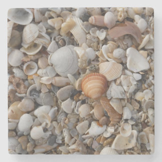 Seashells At The Sea Shore Stone Coaster