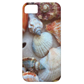 Seashells by the Seashore Case For The iPhone 5