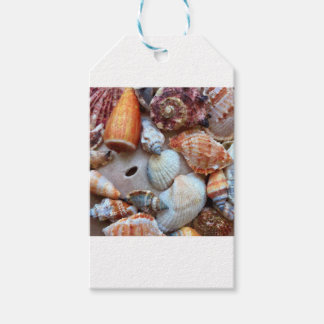 Seashells by the Seashore Gift Tags