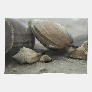 Seashells by the Seashore Hand Towels