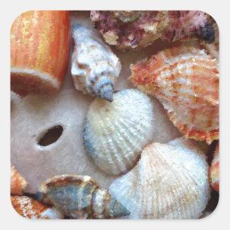 Seashells by the Seashore Square Sticker