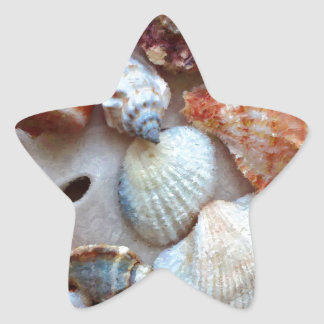 Seashells by the Seashore Star Sticker