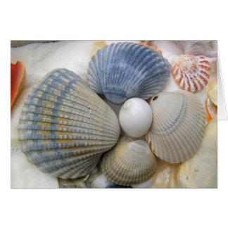 Seashells Christian Friend's Birthday Greeting Card