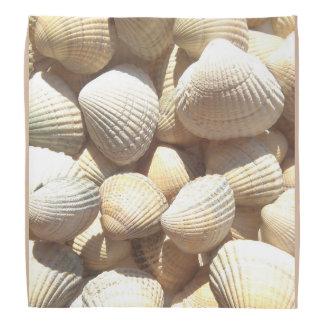 Seashells collection, bandana