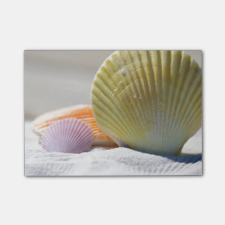 Seashells in White Sand Post-it Notes