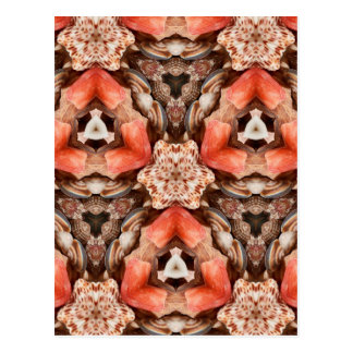 Seashells Kaleidoscope Postcard