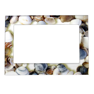 Seashells on a Beach Magnetic Frame