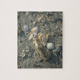 Seashells On A Sandy Beach Puzzle