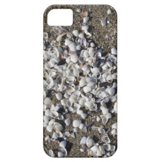 Seashells on sand. Summer beach background Barely There iPhone 5 Case