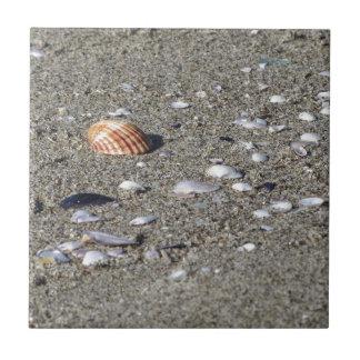 Seashells on sand. Summer beach background Ceramic Tile