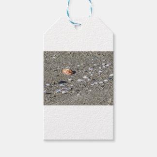 Seashells on sand. Summer beach background Gift Tags
