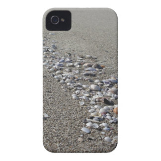 Seashells on sand. Summer beach background iPhone 4 Case-Mate Cases