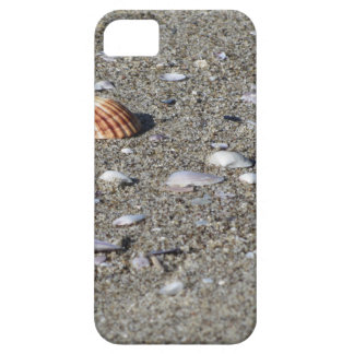 Seashells on sand. Summer beach background iPhone 5 Cover